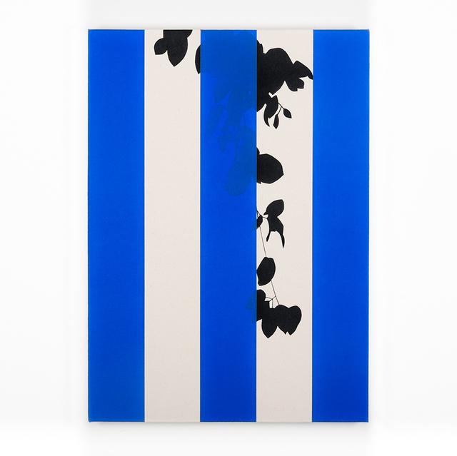 , 'Thunbergia (Blue),' 2016, Instituto de Visión