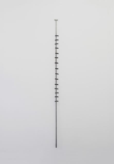 , 'Invertebráceo,' 2018, Pasto