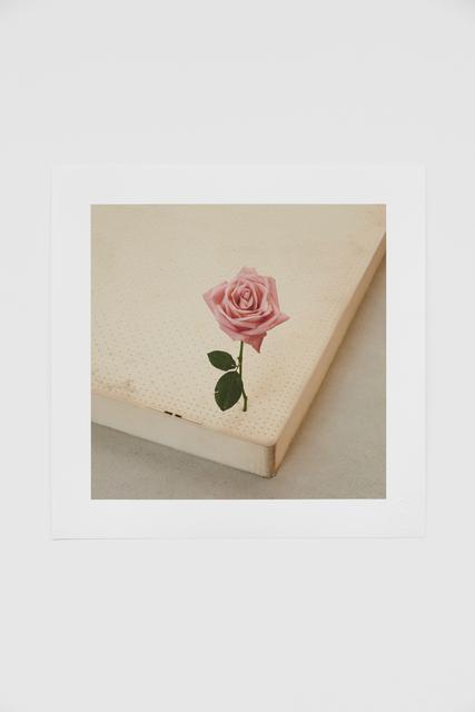 casper sejersen, 'One Perfect Rose', 2019, Print, Giclée print on Hahnemuhle Photo Rag, Cob