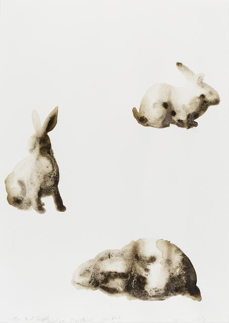 , 'Cottontail Rabbit (Sylvilagus floridanus),' 2014, Parrish Art Museum