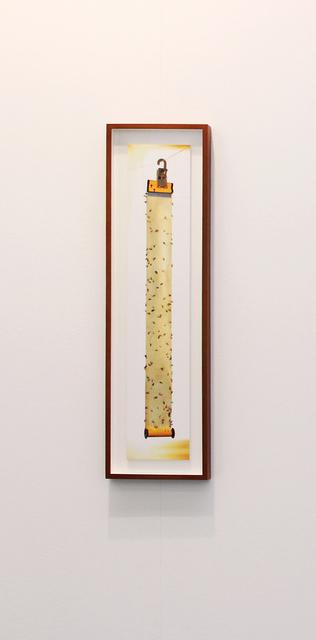 , 'Les adorateurs du soleil, after Charles Baudelaire & Jacques-André Boiffard,' 2013, Galerie Christophe Gaillard