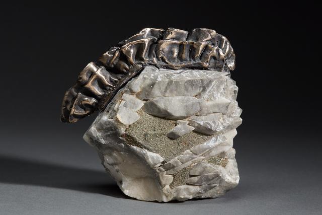 , 'Debra Baxter, Ruff, 2018, fluorite, pyrite, bronze ,' 2018, form & concept