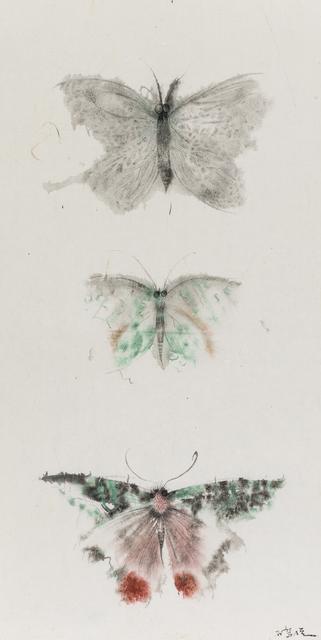 , 'Butterflies of Fantasy No.4,' 2015, Arthill Gallery