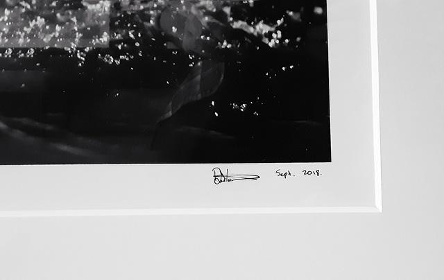 David Yarrow, 'Diamonds In The Sky', 2018, Photography, Archival Pigment Print, Hilton Asmus