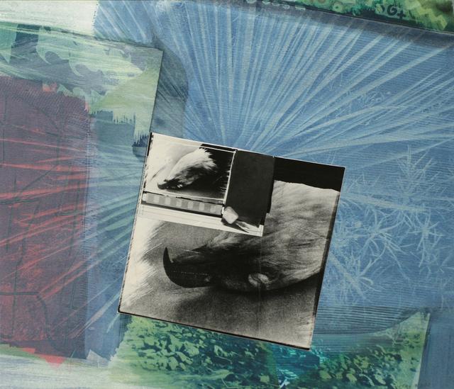 , 'Eagle Pelt,' 1988, Bruce Silverstein Gallery