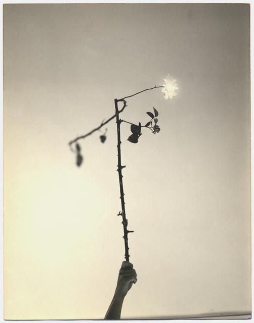Yamamoto Masao, 'Untitled #545 (from A Box of Ku)', Yancey Richardson Gallery
