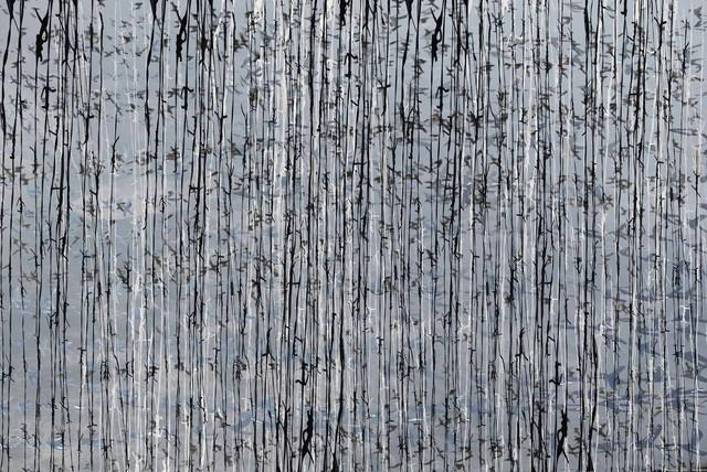 , 'Drifting Lines,' 2013, Zilberman Gallery