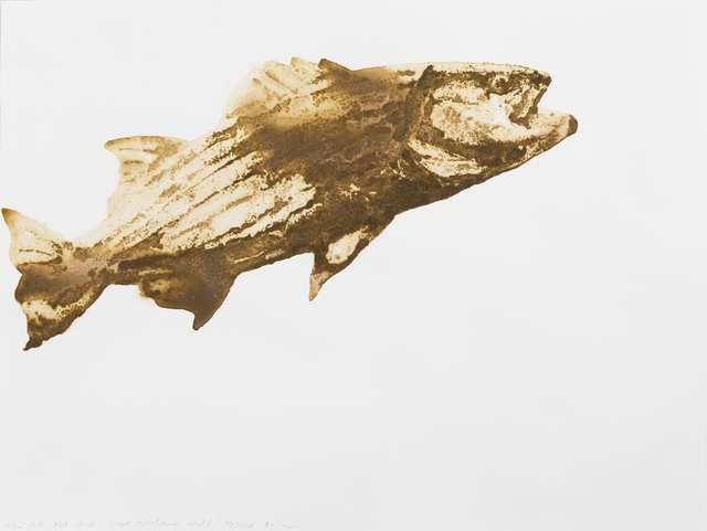 , 'Striped Bass (Morone saxatilis),' 2014, Parrish Art Museum