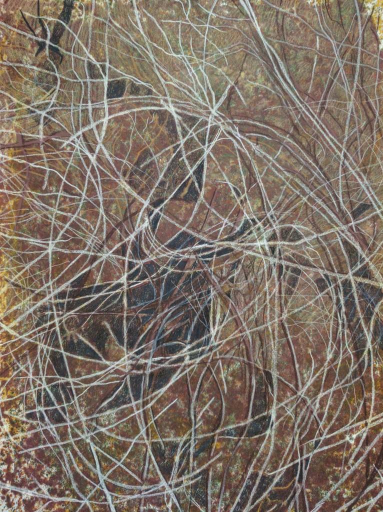 Desert Twigs, 2016 Barbara Spiller