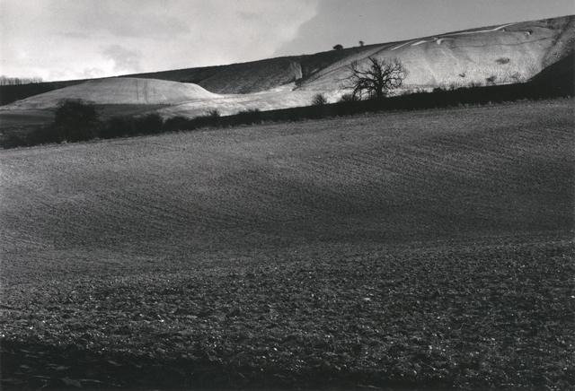 Fay Godwin, 'White Horse and Dragon Hill, Uffington', 1974; printed 1980, San Francisco Museum of Modern Art (SFMOMA)