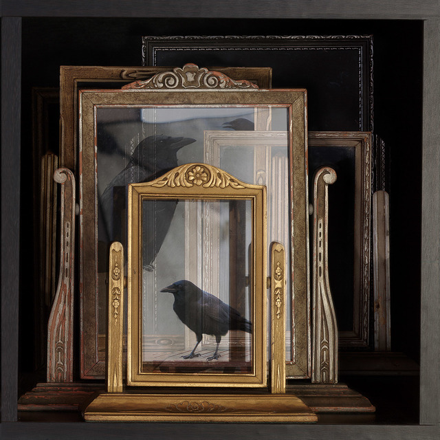 , 'Frame Collector with Crows2,' 2017, Foto Relevance
