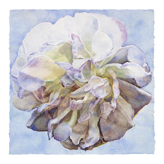 Joseph Raffael, 'Elegy II', 2019, Painting, Watercolor on paper, Nancy Hoffman Gallery