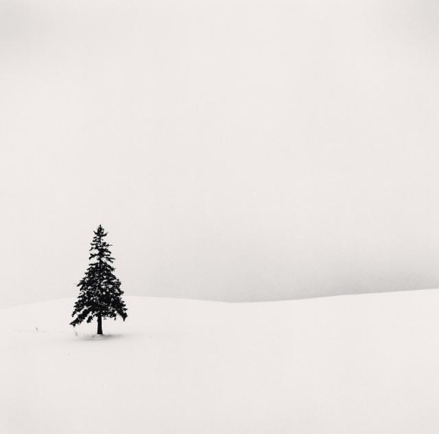 Michael Kenna, 'Lone Tree, Bibaushi, Hokkaido, Japan', 2004, Photography, Gelatin silver print, PDNB Gallery