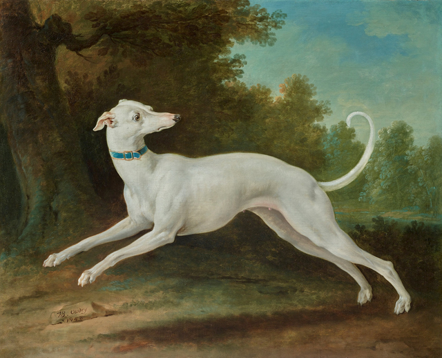 Jean-Baptiste Oudry, 'White Greyhound', 1748, Didier Aaron
