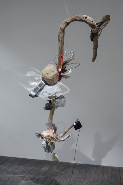 , 'Natural Selection I,' 2016, arthobler gallery
