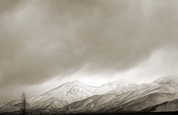 Cara Weston, 'Lone Tree and Mountain Snow, California', 2009, Weston Gallery