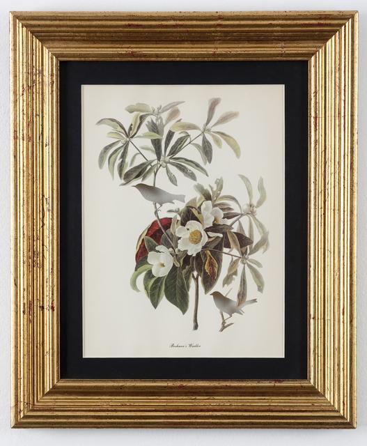 , 'RIP Bachman's Warbler,' 2005-2007, Ronald Feldman Gallery