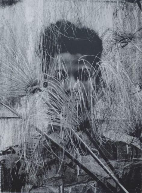 , 'Cyperus Papyrus,' 2015, Mariane Ibrahim Gallery