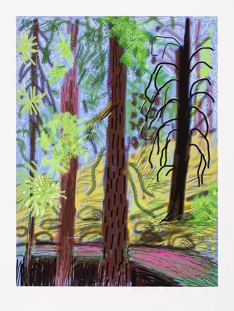 , 'The Yosemite suite No. 6,' 2010, Galerie Lelong & Co.
