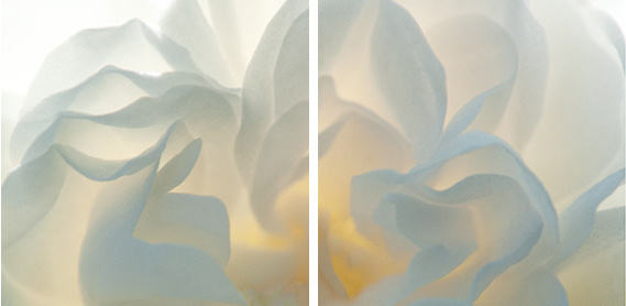 , 'White Fire Diptych,' , Lanoue Gallery