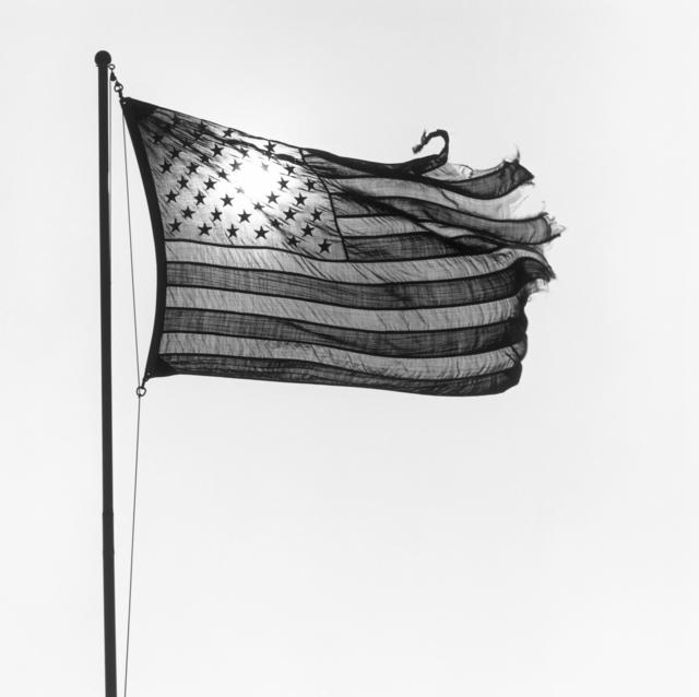 , 'American Flag,' 1977, ARoS Aarhus Art Museum