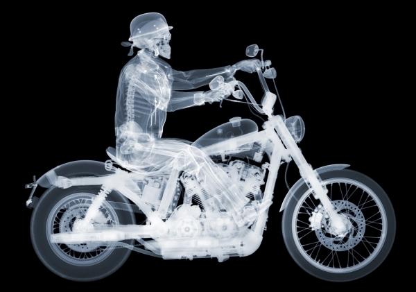, 'Harley Davidson Rider,' 2014, Art Angels