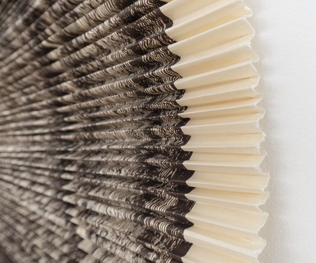 Ann Hamilton, 'ciliary (#9)', 2010, Print, Unique lithograph and fabric construction, Gemini G.E.L.