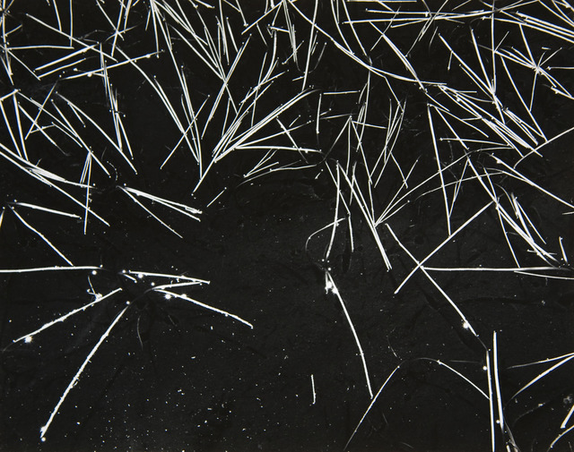 , 'Grass and Pool,' ca. 1935, Atlas Gallery