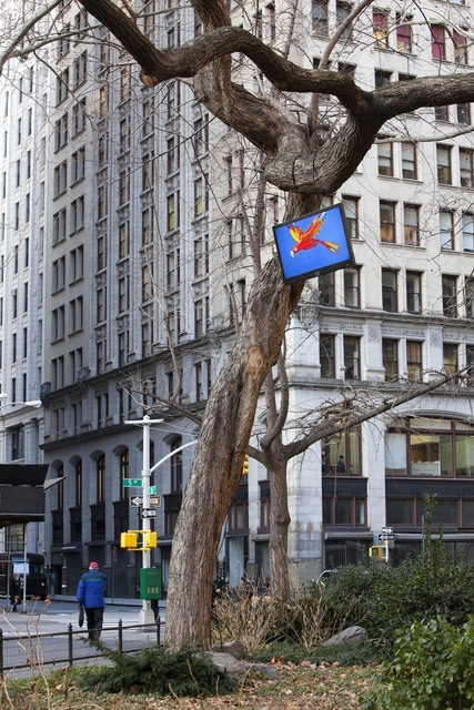, 'Bird,' 2011, Madison Square Park