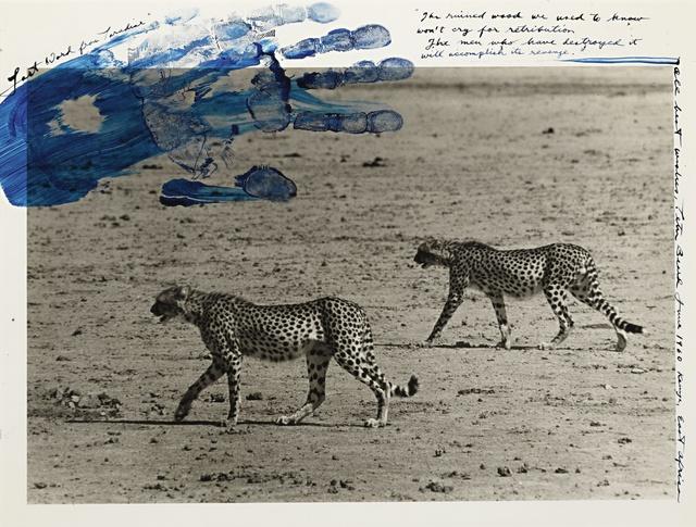 Peter Beard, 'Hunting Cheetahs', 1960, Sotheby's