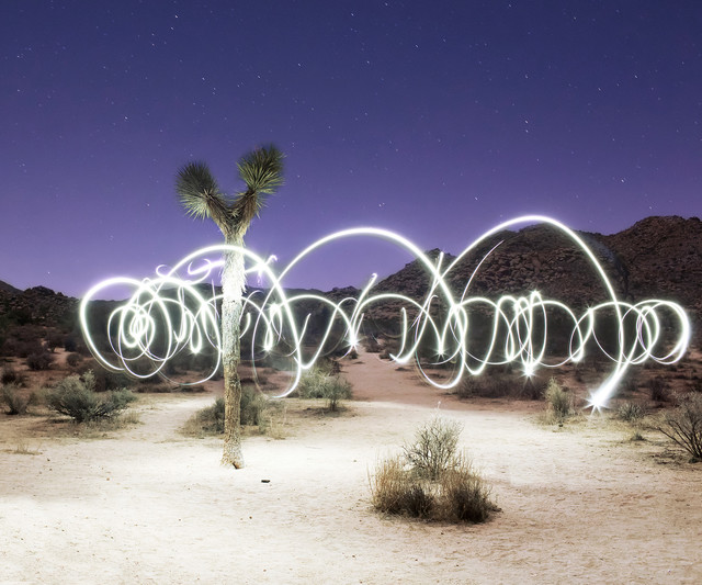 , 'Joshua Tree National Park,' , ArtStar