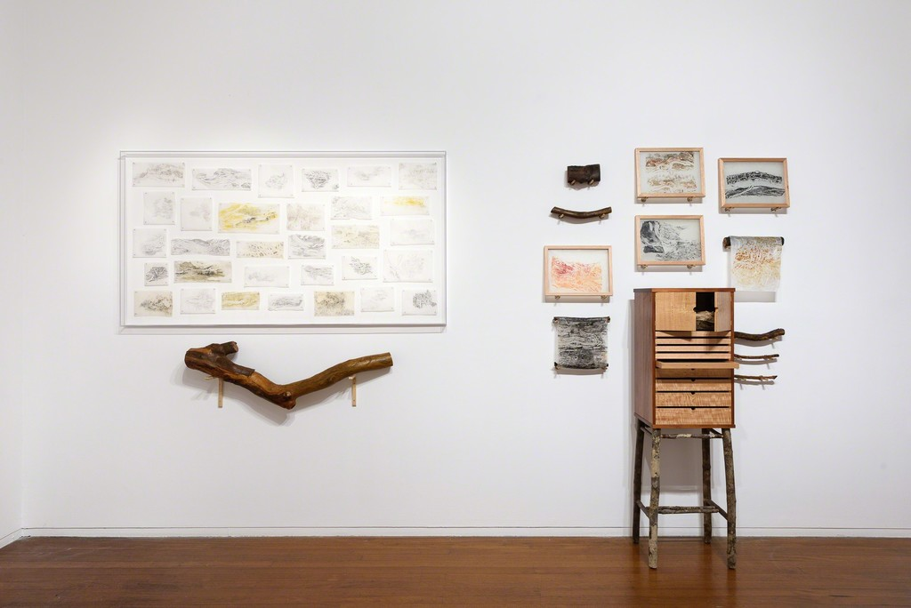 John Wolseley, One Hundred and One Insect Life Stories, Roslyn Oxley9 Gallery, 2019, (installation view). photo: Luis Power