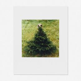 William Wegman, 'Untitled (Flo),' ca. 1995, Wright: Prints + Multiples (January 2017)
