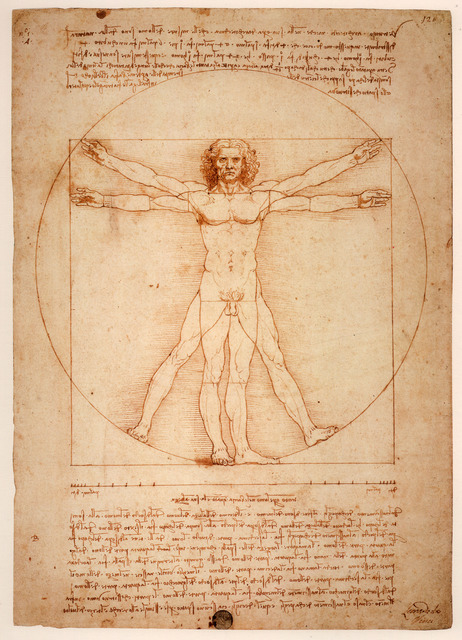 Leonardo da Vinci, 'Vitruvian Man', ca. 1409, Art History 101