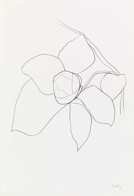 , 'Camellia II,' 1964-1965, Susan Sheehan Gallery