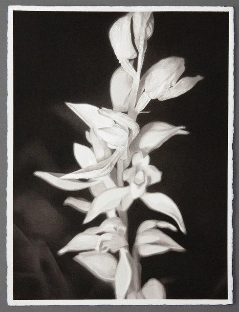 , 'Untitled,' , Davidson