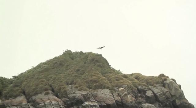 , 'Isla de Lobos,' 2014, Leyendecker