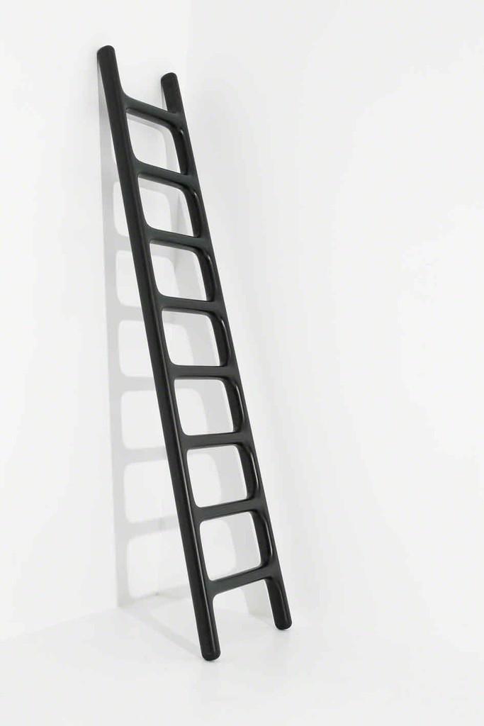 """""""Carbon Ladder"""""""