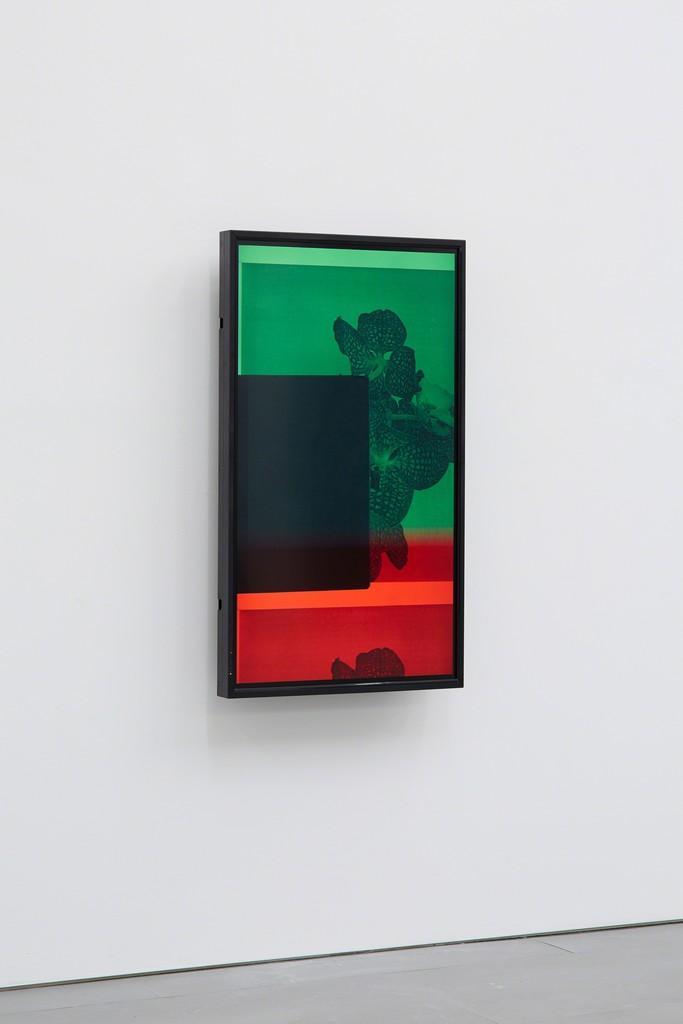 Maria Taniguchi, Untitled, 2015, Single channel video installation, 7:30 min Exhibition view at carlier | gebauer, 2015