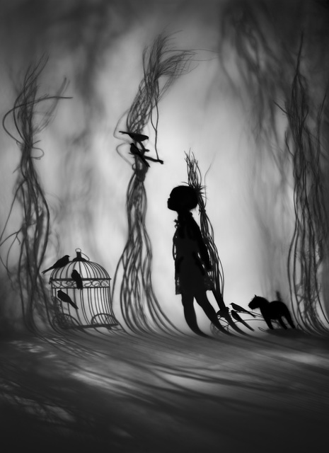 , 'The Bird Collector,' 2012, see+ Gallery