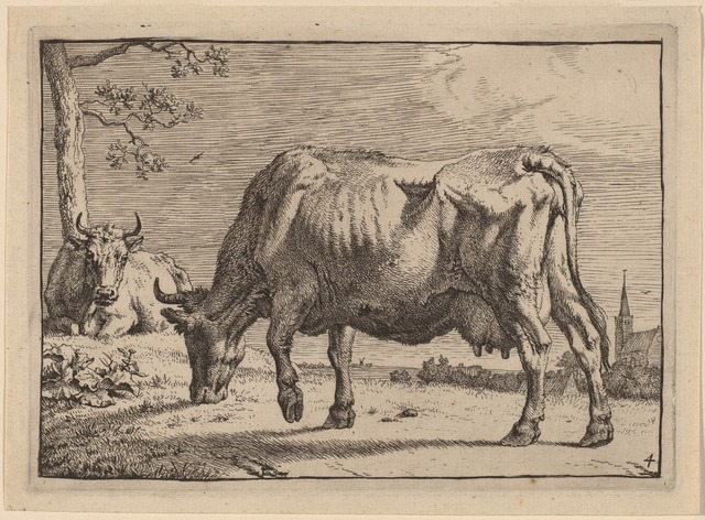 Paulus Potter, 'Grazing Cow', 1650, Print, Etching, National Gallery of Art, Washington, D.C.