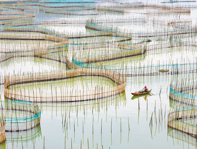 David Burdeny, 'Nets 1, Fujian Provence, China', 2017, Galerie de Bellefeuille