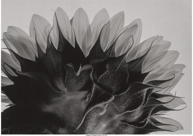 Yasuhiro Ishimoto, 'A Group of Three Photographs of Flowers', Heritage Auctions