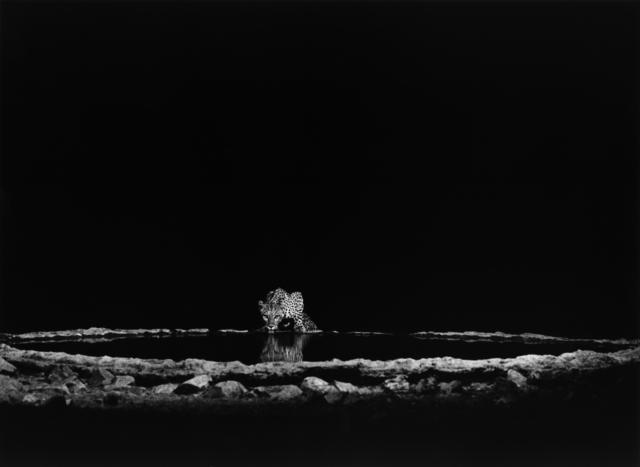 , 'NAMIBIA,' 2006, Beetles + Huxley