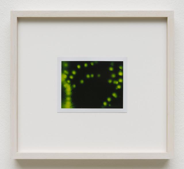 , 'Photuris #8,' 2013, Galerie Crone