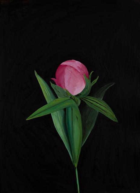 Sarah Osborne, 'Night Flower', 2018, Projet Pangée