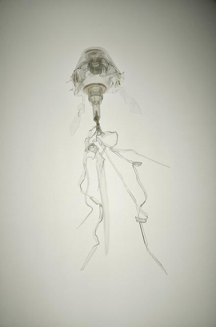 Laurent Lamarche, 'Translucida Organidée (échantillons 1)', 2009, Art Mûr