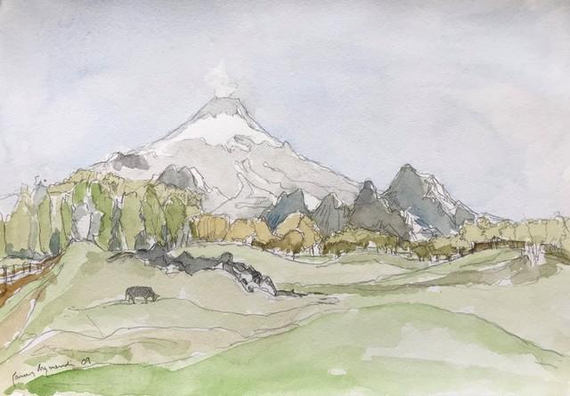, 'Villarrica, Chile,' 2009, Andra Norris Gallery