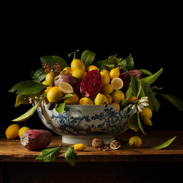 , 'Lemons and Prickly Pears,' 2013, Robert Klein Gallery