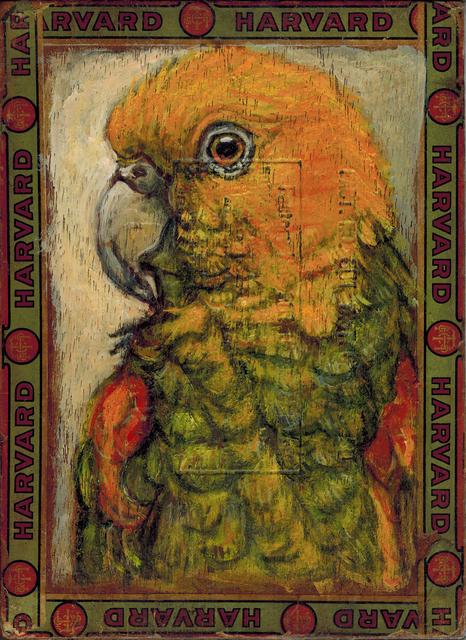 , 'Macaw / Harvard,' 2014, Paul Thiebaud Gallery